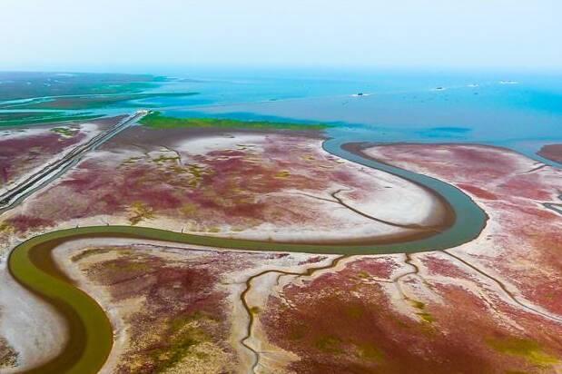 权威发布|山东境内黄河干流及主要支流国控监测点全部达到或好于Ⅲ类水体