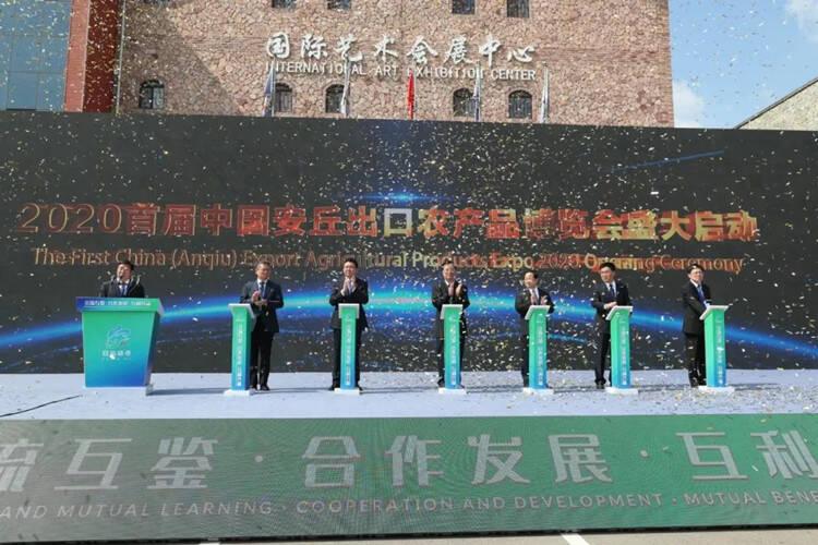 29秒|2020首届中国安丘出口农产品博览会开幕 设置展位142个