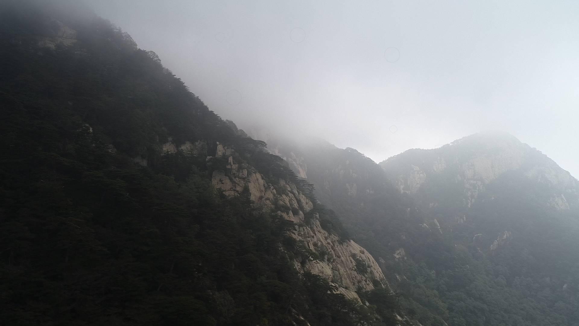 47秒|太养眼了!雾海苍茫看青松 国庆假期首日泰山迎来雾海奇观