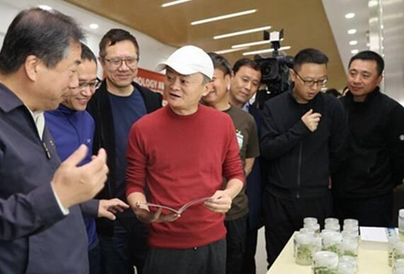 电解质|马云叒来济南了!电商助力乡村振兴,看阿里携手山东战略合作的这五年
