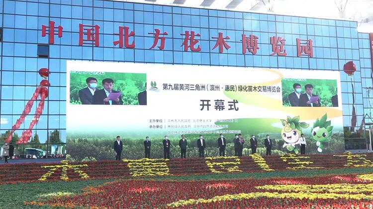 44秒丨滨州惠民:生态建设推动苗木高质量发展