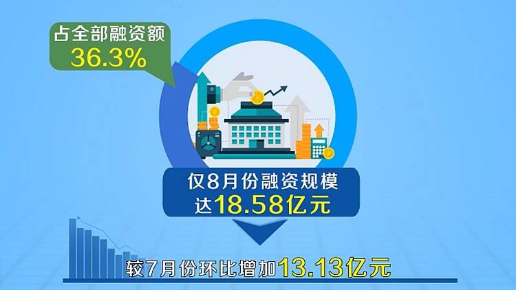 数据视场|畅通银企对接桥梁!8月份山东政府采购合同融资环比增长240%
