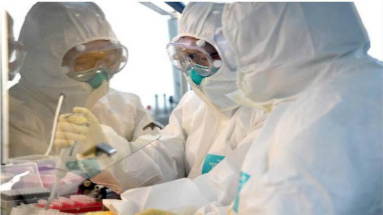 潍坊临朐县发布紧急通告:9月23日以来去过青岛或者从青岛返回的人员 请主动报备并进行核酸检测