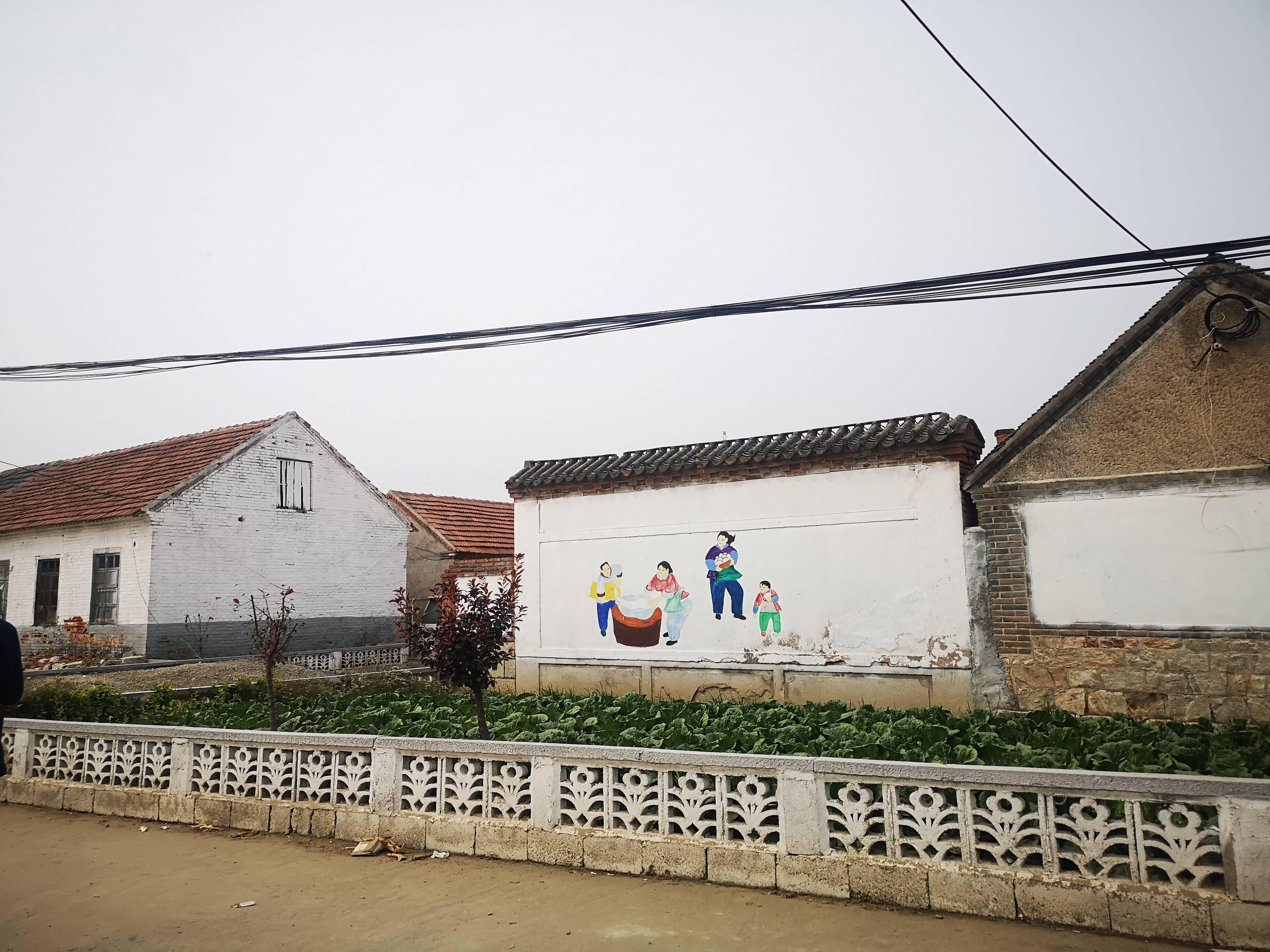 家门口建起樱桃棚,来看烟台小山村如何走上脱贫路