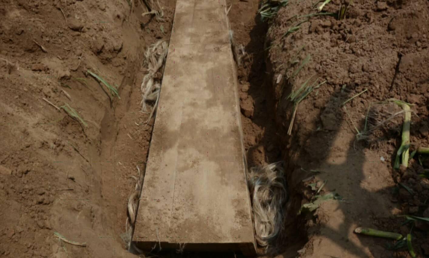 青岛杀人菏泽老家抛尸 他把情人偷埋在了玉米地 一口棺材成破案关键