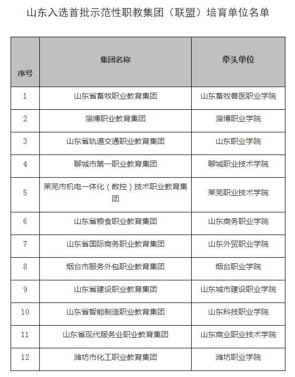 山东12个职教集团入选全国首批示范性职教集团 数量全国第二