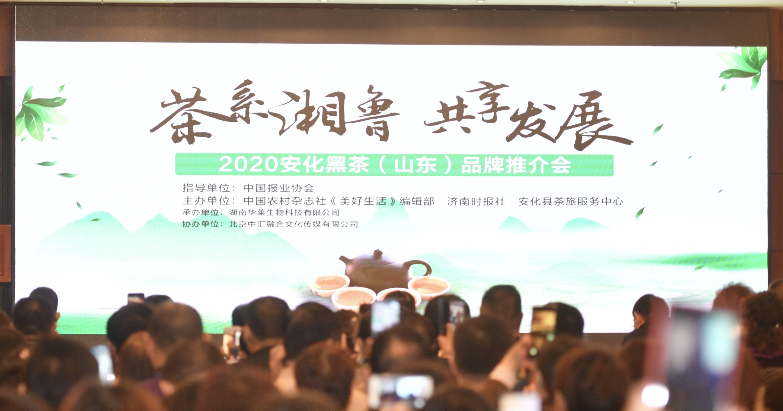 2020安化黑茶(山东)品牌推介会在济成功举办