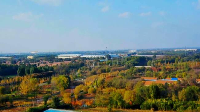 """45秒丨河水潺潺、层林尽染……潍坊大于河湿地披上""""金秋盛装"""""""