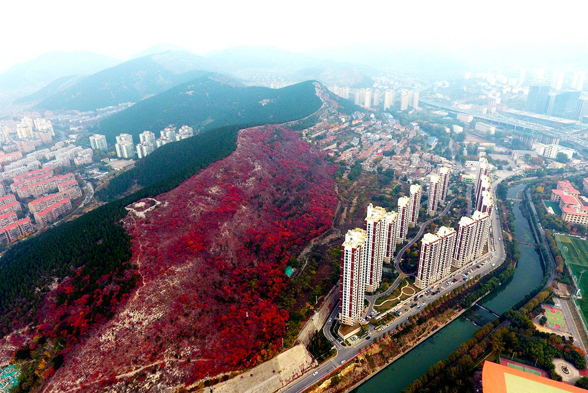组图丨济南城中山体公园秋色美如画,市民家门口就可领略层林尽染的美景