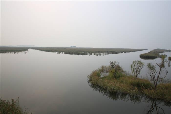 以水为笔 泰安东平绘就最美生态画卷