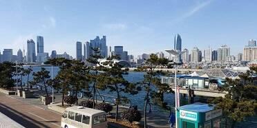 山东与世界500强|今年1至8月日本在青岛投资项目22个,同比增长15.79%