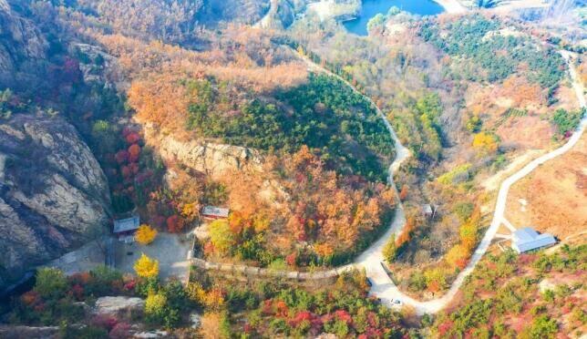 30秒丨秋冬交替时节 来日照五莲七连山赴一场美丽之约