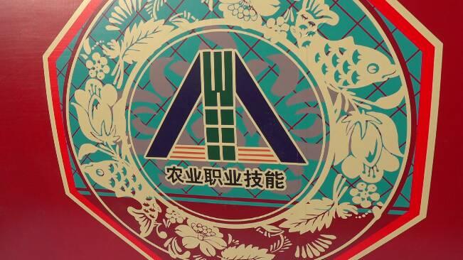 48秒丨430位技能达人激烈角逐!第三届全国农业行业职业技能大赛在潍坊闭幕