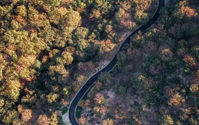 36秒丨行走的山水画!初冬相约日照五莲最美公路