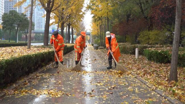 """98秒丨6小时人工清扫落叶4吨!潍坊环卫工人迎来一年中""""最忙季"""""""