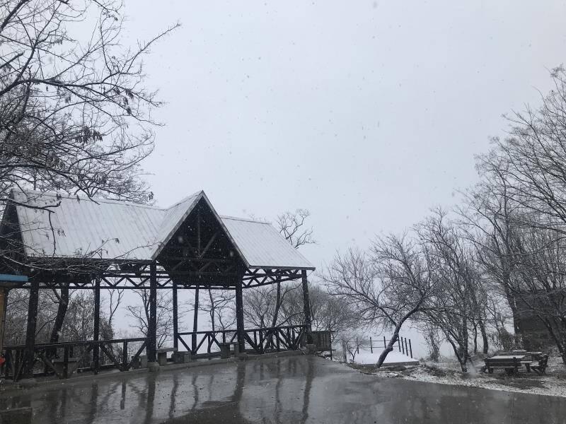 """41秒丨潍坊迎来今冬首场降雪 未来三天""""雨雪+降温""""模式开启"""