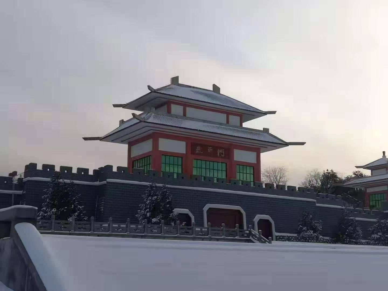 67秒|一起看初雪吧!济南2020入冬第一场雪来啦 各地雪景美不胜收
