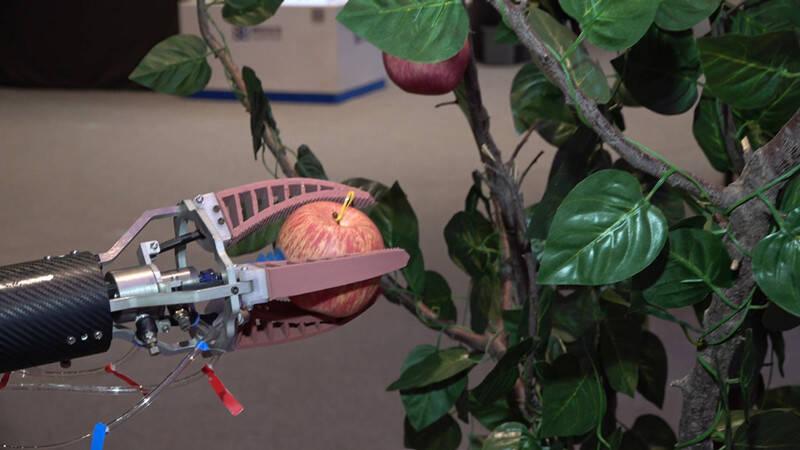 100秒| 机器人有多强来看下!最快8秒摘10个苹果,做饭调酒冲咖啡