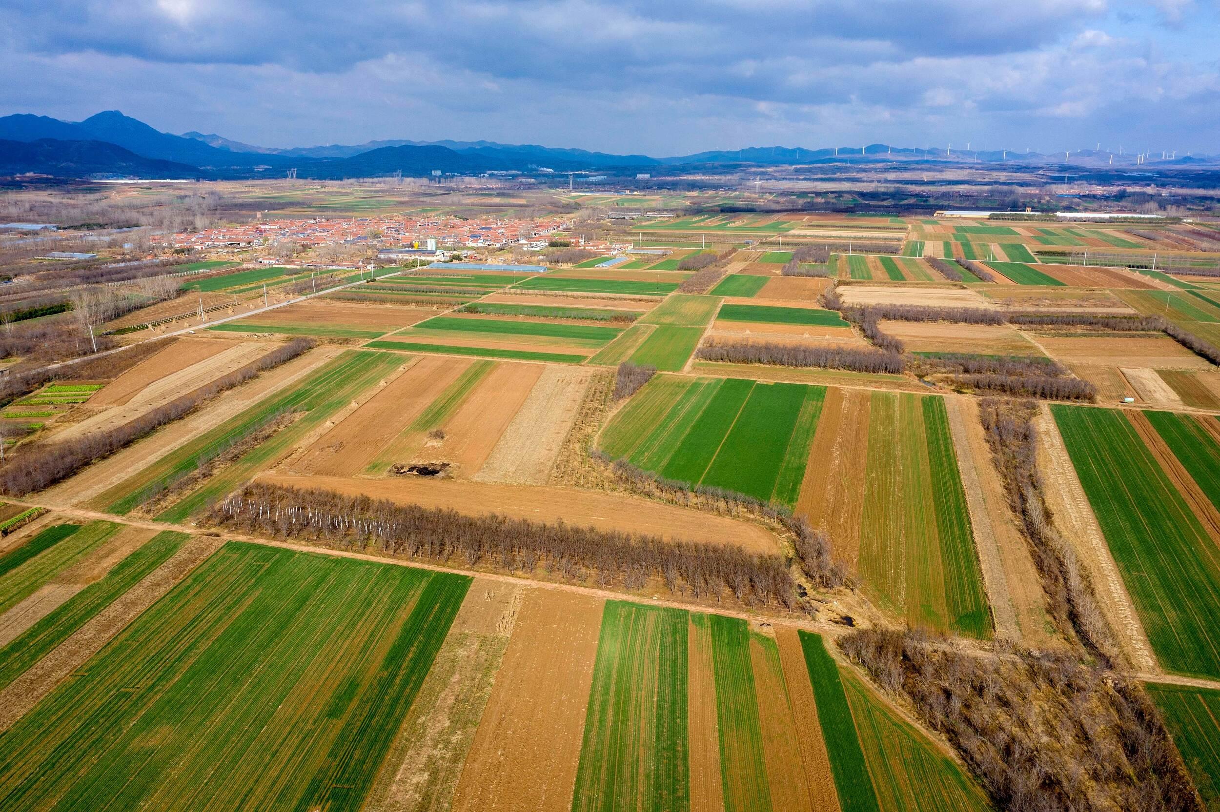 """着力打造中国特色现代化农业的""""鲁版""""富春山居图丨闪电评论"""