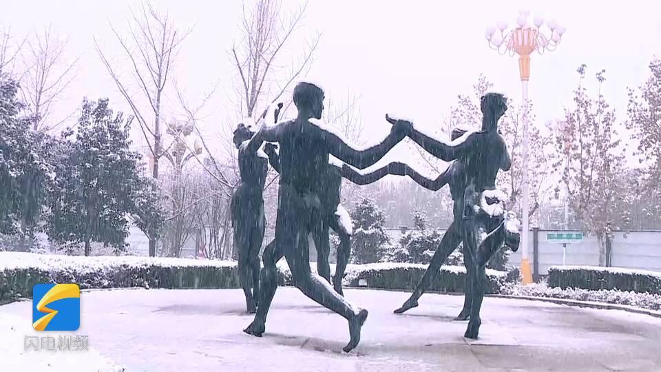 53秒丨雪花飞舞树枝白了头 烟台的初雪到货了