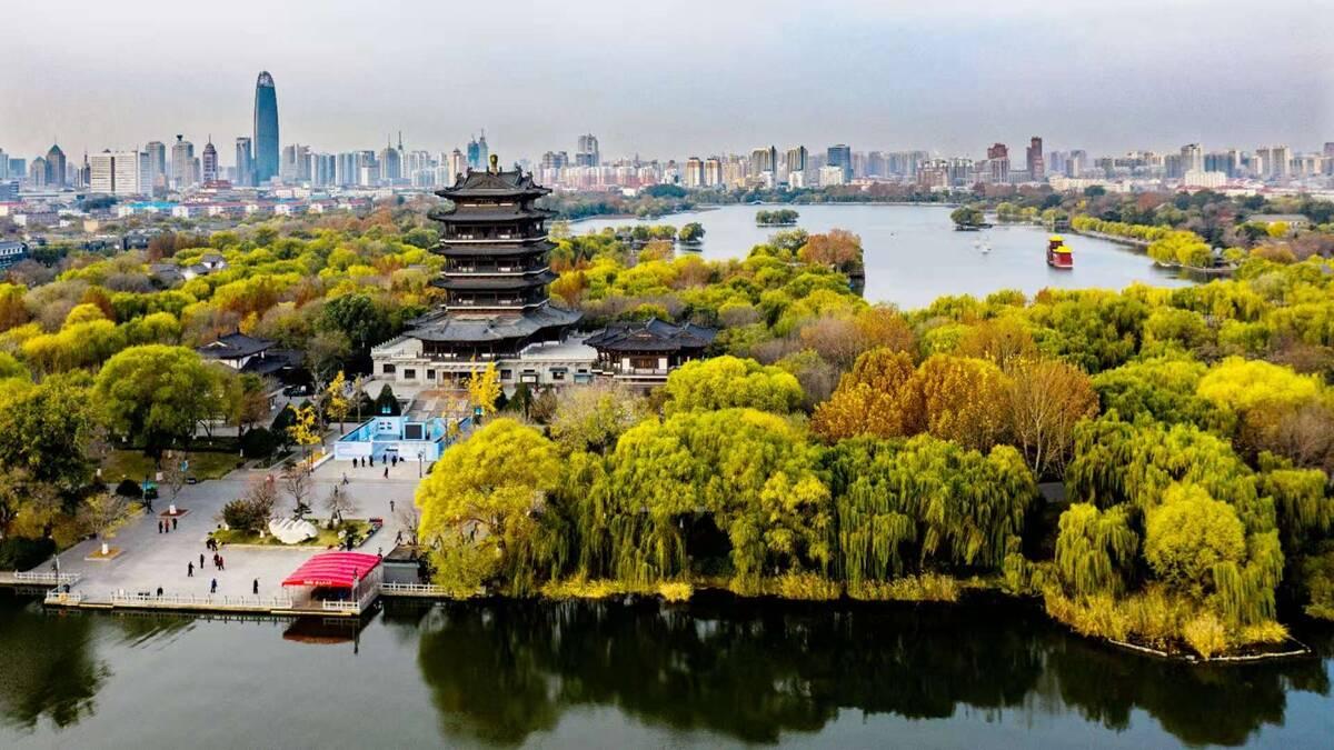 初冬的大明湖 色彩如画垂柳摇金