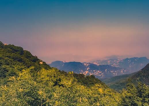 山东修订泰山保护条例:景区内捡拾带离山石 情节严重处两千以上两万以下罚款