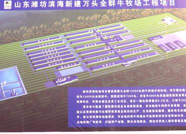 潍坊出台实施意见 有补助税收政策 有建设用地指标奖励 全力提升奶业发展