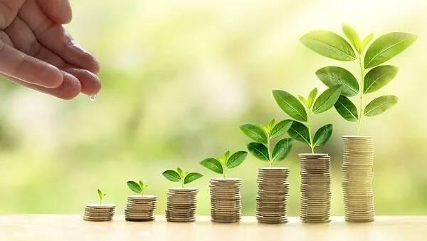 山东加大重点生态保护县债券资金支持力度 累计发行专项债券19.71亿