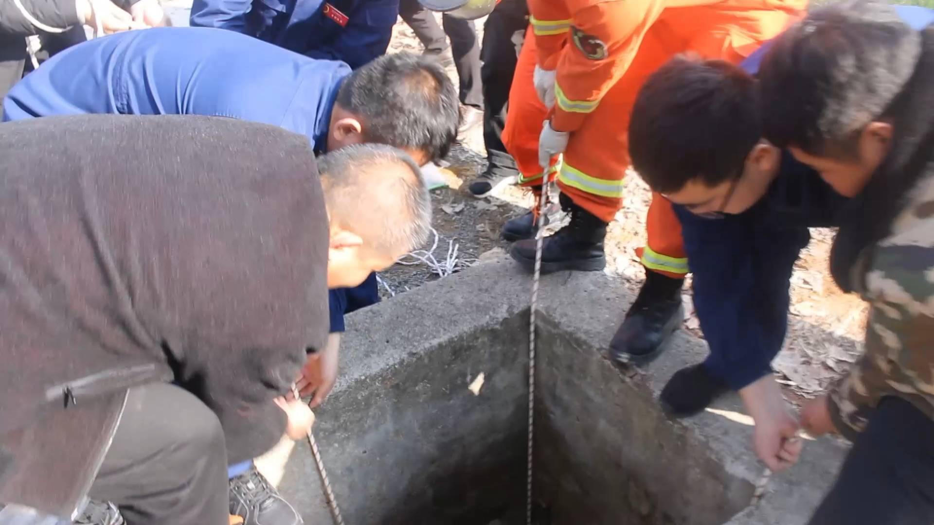 """枣庄一50多岁女子掉入10米深井:""""我想看看井下面有水吗,一下子掉下去了"""""""