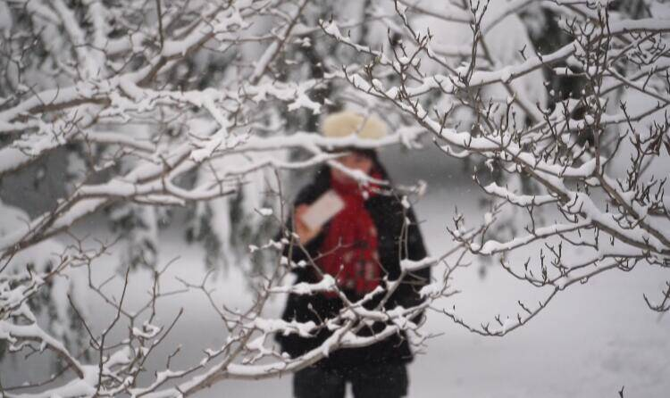 2021元旦假期 温泉、滑雪等文旅新业态受潍坊市民追捧
