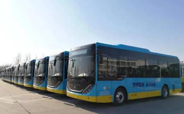 滨州这6条公交线路免费乘坐 其中1条为旅游专线