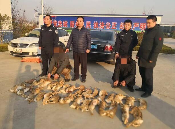 31秒|日照警方连续侦破多起非法狩猎野生动物案