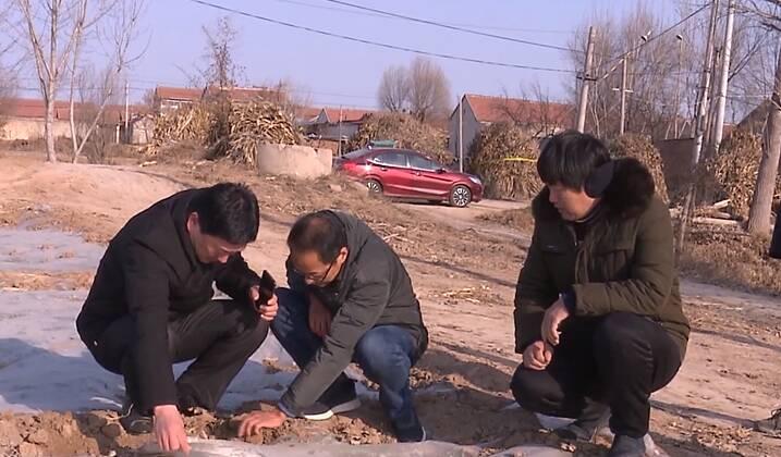 50秒丨应对寒潮!济南商河农技人员到田间地头为农户指导农业生产防寒工作
