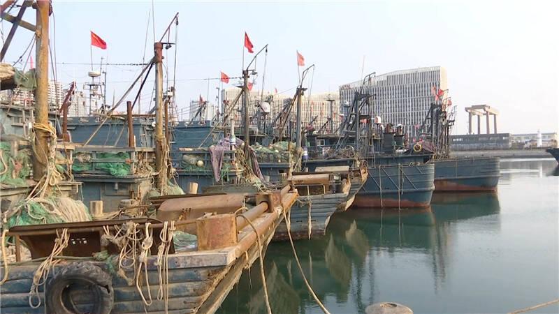 51秒|天寒地冻、风大浪急,青岛渔船回港避风避寒
