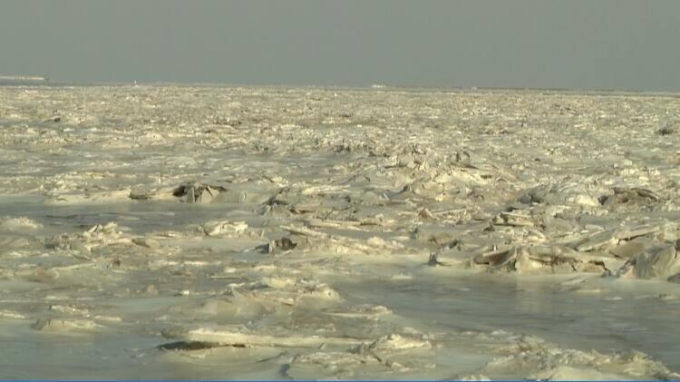 46秒|潍坊部分海域海冰厚度已达10-15cm  船舶全面禁限行