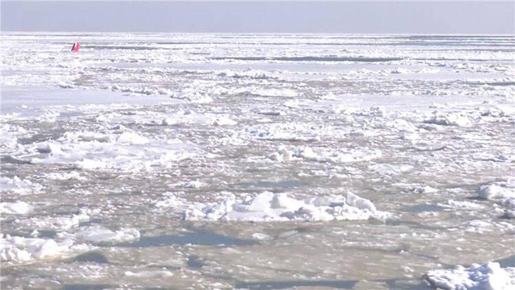65秒|遇寒潮海面冰封十几海里潍坊港加强巡航保障航道安全