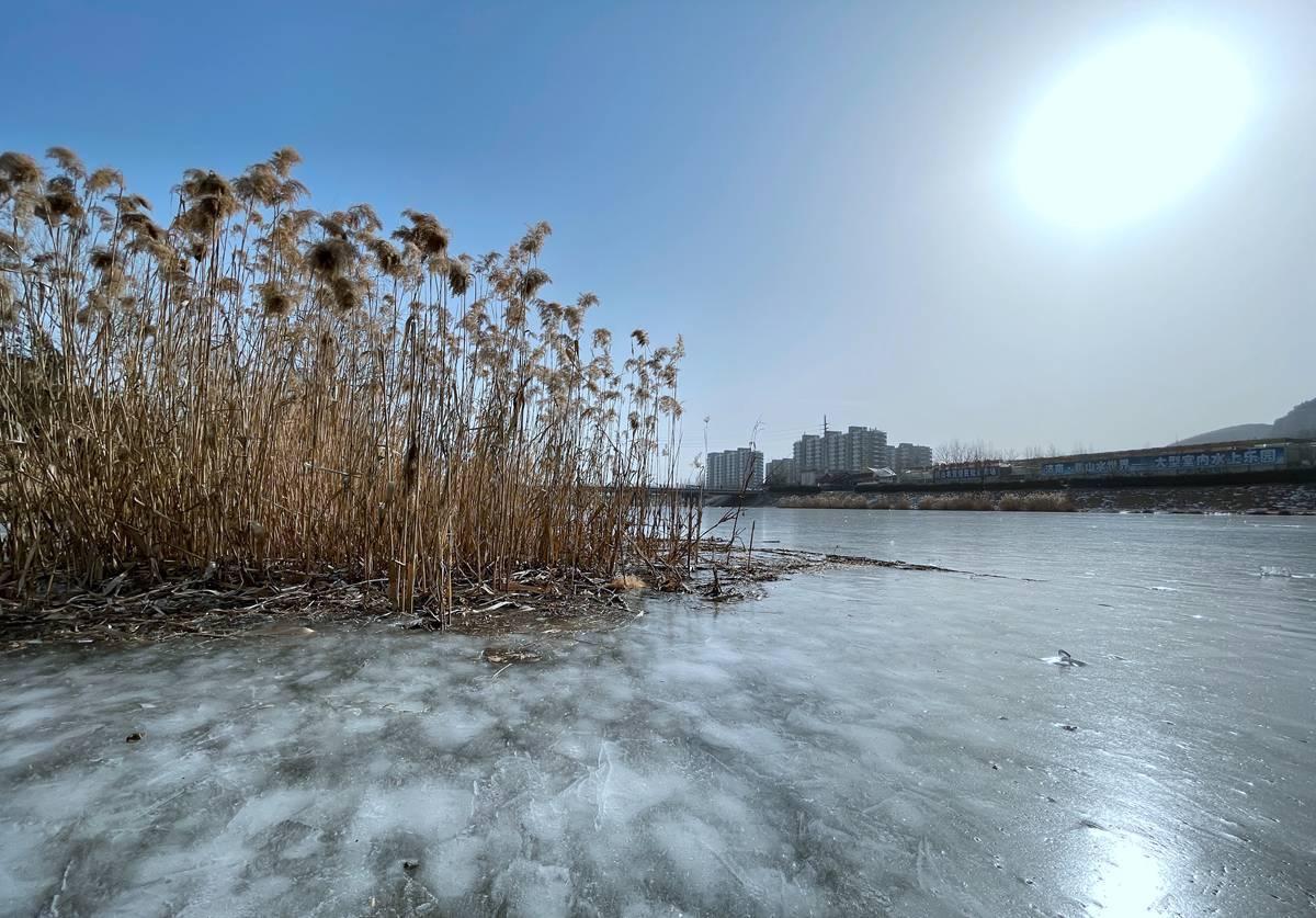 组图|连日低温济南腊山河分洪道结冰 冰冻厚度达10余公分