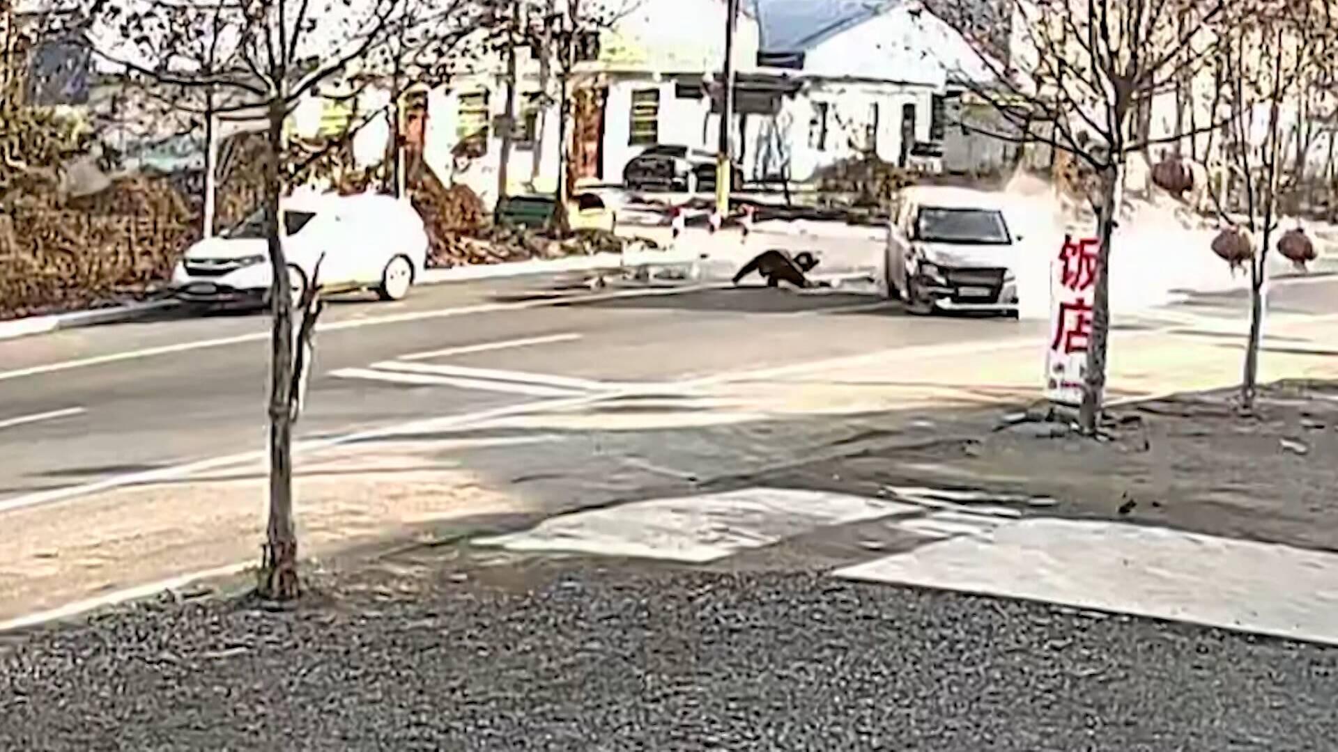 临沂:老人被撞飞十多米当场死亡 16周岁肇事司机逃逸