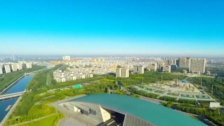 生态山东|2020年东营新增湿地保护面积近2万公顷