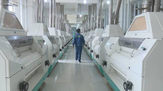 62秒丨日生产面粉1200吨!潍坊面粉加工企业全力保障市场供应