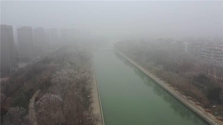 56秒丨东营出现大雾天气 部分区域能见度小于50米 建议市民尽量减少外出