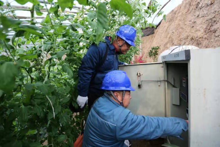 潍坊安丘:电力赋能乡村产业振兴