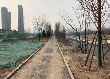问政回头看|菏泽洙水河污水管网投入使用 两岸景观带基本建成