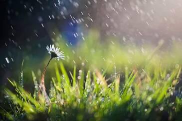 海丽气象吧|好雨知时节!济南喜迎牛年首场春雨