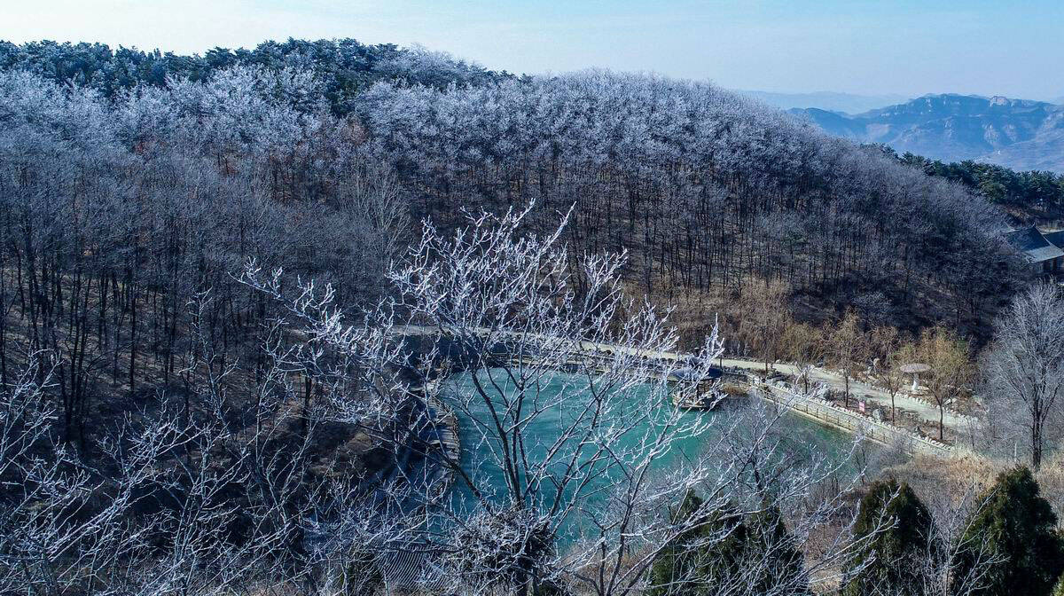 春节假期迎来寒潮天气 济南跑马岭雾凇景观迷人