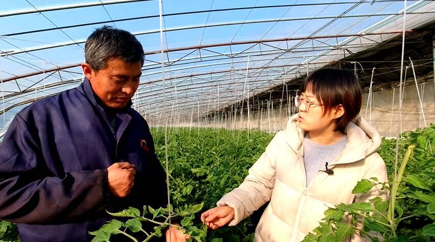 """81秒丨邹城农技专家现场""""支招"""" 助力春季蔬菜生产"""