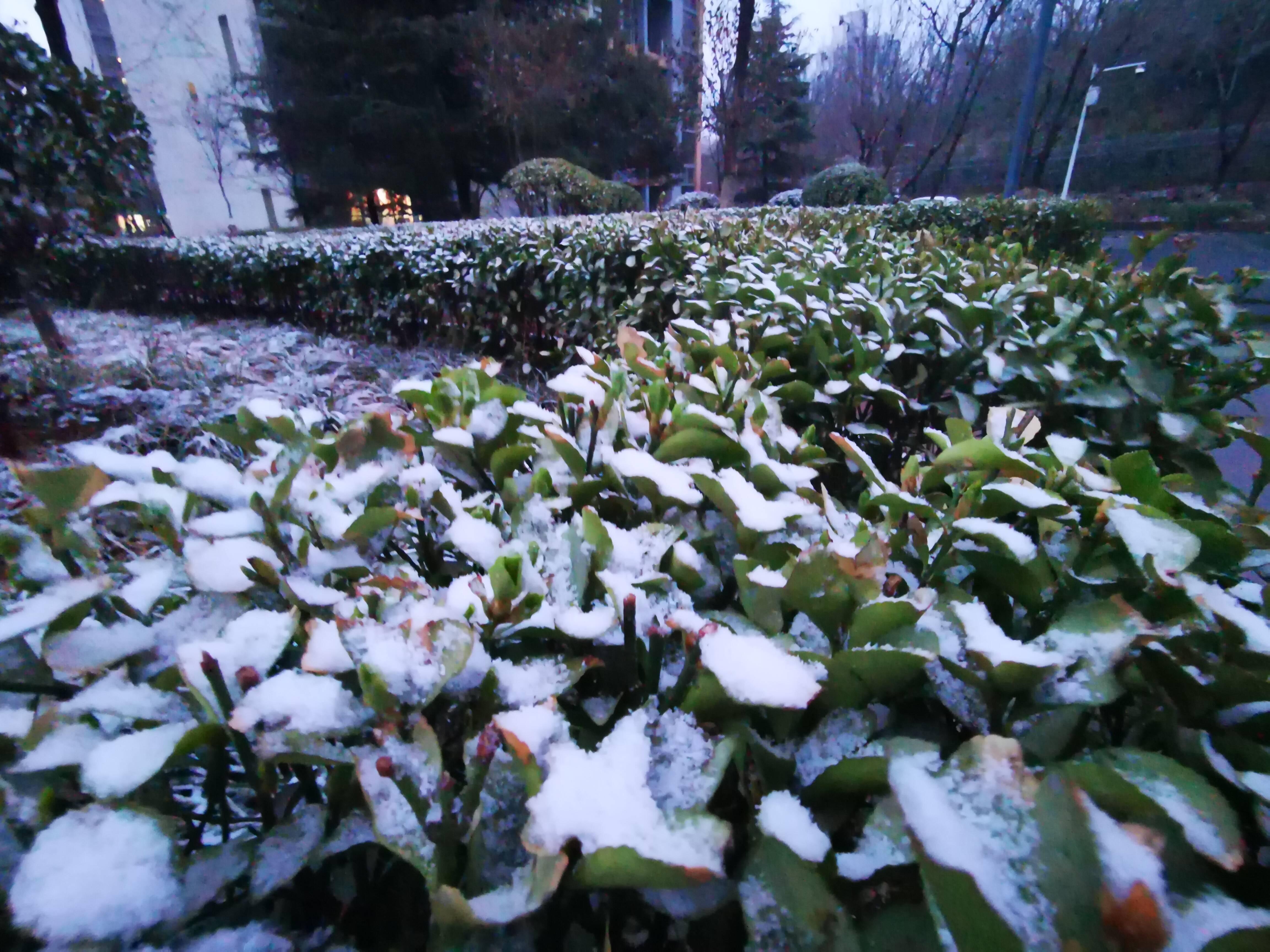 下雪啦!开学第一天+雨雪降温+周一 今天早高峰将更拥堵!
