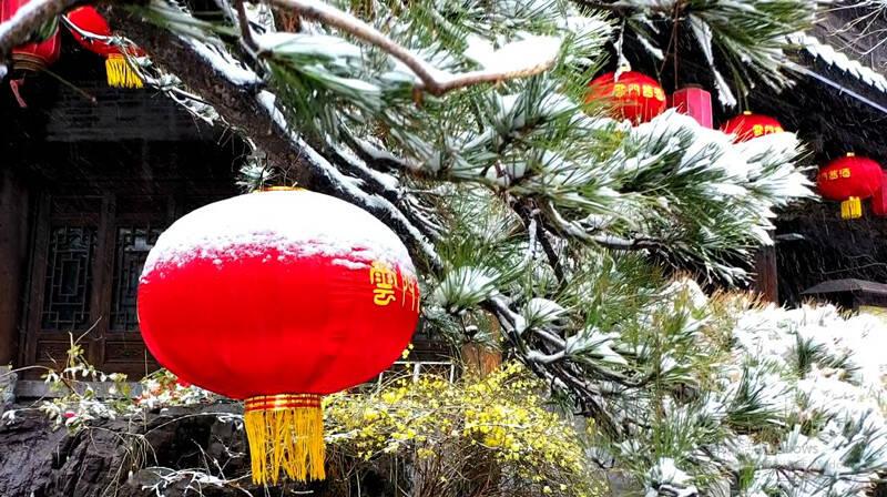 63秒 | 雪降古城万物披银装 青州春雪美景入画来