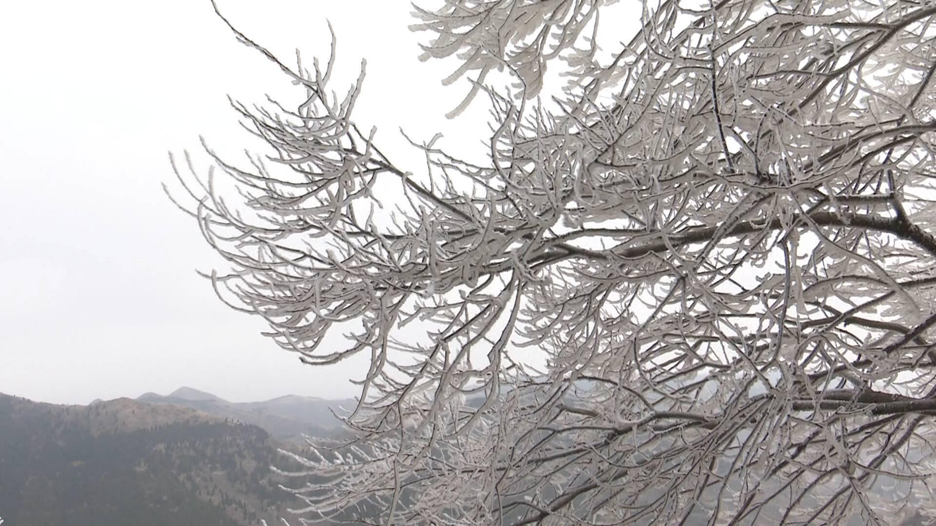 56秒|仲春时节青州仰天山现雾凇奇观 游客冻红了脸:太美 太震撼