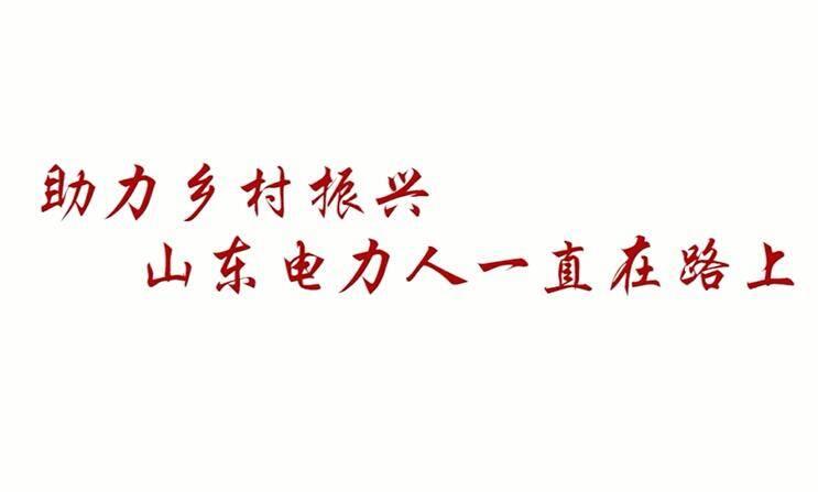 见证乡村蜕变—国网山东电力吕明玉的扶贫故事